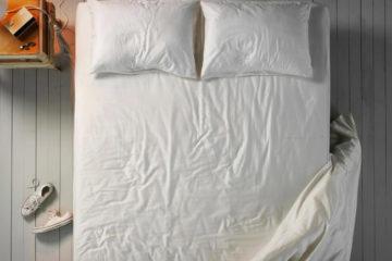 polar-pillow