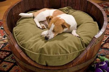 Wine-Barrel-Dog-Bed