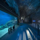 Largest Aquarium In Nort...