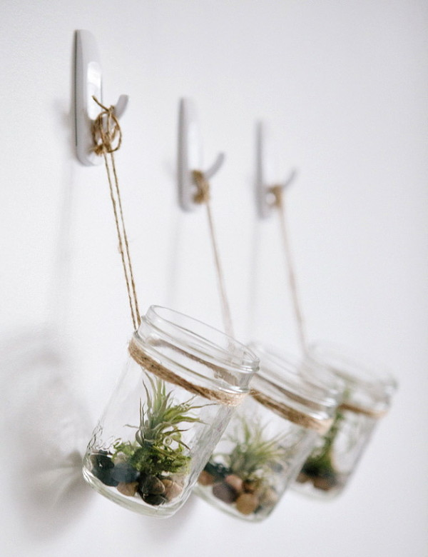 6 cool practical diy projects hispotion do it yourself hanging mason jar planter with air plants yea i know air plants are something new to me too but they make an awesome decoration for this solutioingenieria Image collections