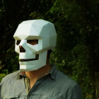 Make Your Own 3D Mask Fo...