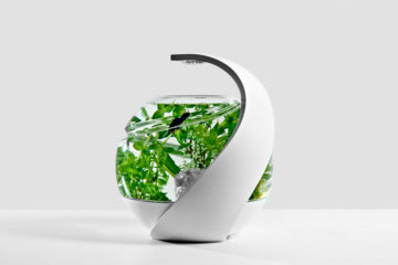Avo Self Cleaning Fish Tank 1
