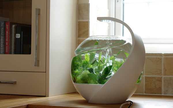 Avo self cleaning fish tank hispotion for Clean fish tank