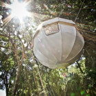 Cocoon Tree Bed - The Lu...