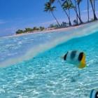 7 Most Appealing Islands...
