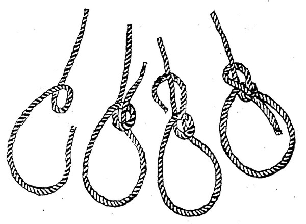 bowline knot diagram related keywords