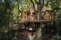 woodman-treehouse-1170x657